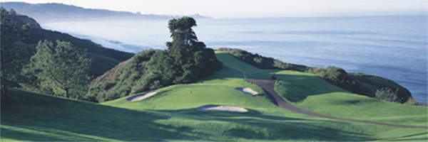 Torrey Pines 6th by Drickey
